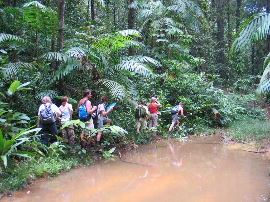 Sergei Prantsuse Guajaanas džunglis